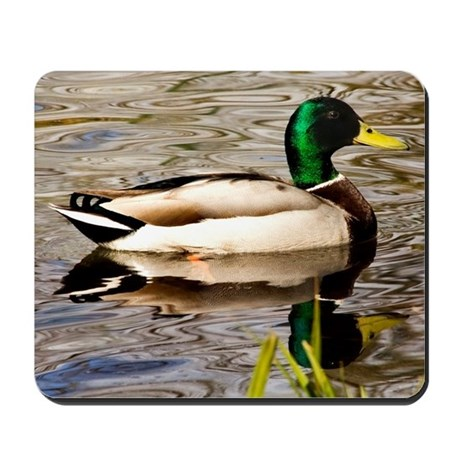 Duck Reflections Mousepad