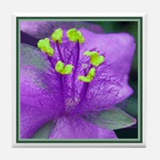 Dayflower Tiles Purple Tile Coaster