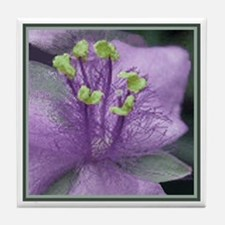 Dayflower Tiles Pastel Purple Tile Coaster