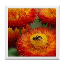 Flower Fly Tile Coaster
