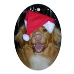 Toller Christmas Ornament (Oval)