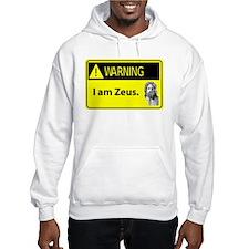 Warning: I am Zeus Hoodie