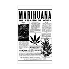 MARIHUANA: The Assassin of Youth Decal
