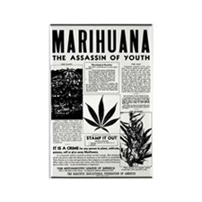 MARIHUANA: The Assassin of Youth Rectangle Magnet