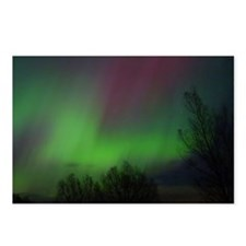 Northern Lights 3 (Package of 8)
