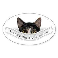 POCKET CAT Oval Decal
