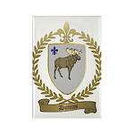 DUMAS Family Crest Rectangle Magnet (100 pack)