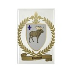 DUMAS Family Crest Rectangle Magnet (10 pack)