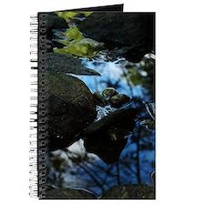 Unique Connelly Journal