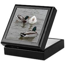 Cute Quackers Keepsake Box