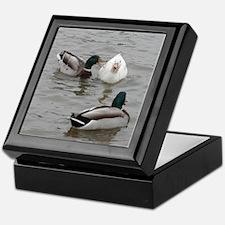Cute Quackers ducks mallard humor funny joke laugh Keepsake Box