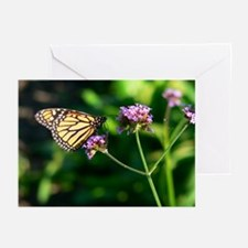 Butterfly in Lincoln Park Greeting Cards (Package