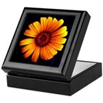 Yellow Daisy Fine Art Keepsake Box