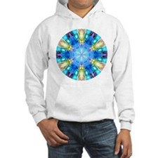 """""""Tribute to Chihuly"""" Hoodie"""