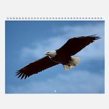 Bald Eagle Wall Calendar - 12 Images