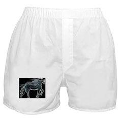 Night Horse Boxer Shorts