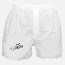 Hunter Pony Art Boxer Shorts
