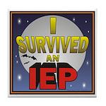 I Survived an IEP Tile Coaster