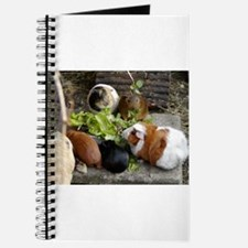Guinea Pig Luncheon Journal