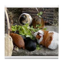 Guinea Pig Luncheon Tile Coaster
