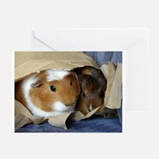 Pigs in a Bag Greeting Cards (Pk of 10)
