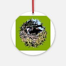 Llano county american bald eagle Ornament (Round)