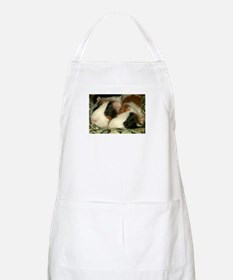 Sleeping Guinea Pigs BBQ Apron