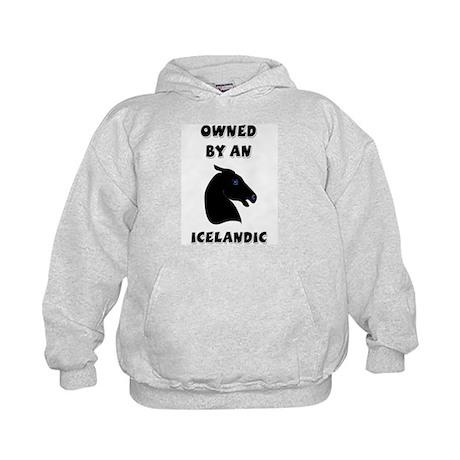 Owned by an Icelandic Kids Hoodie