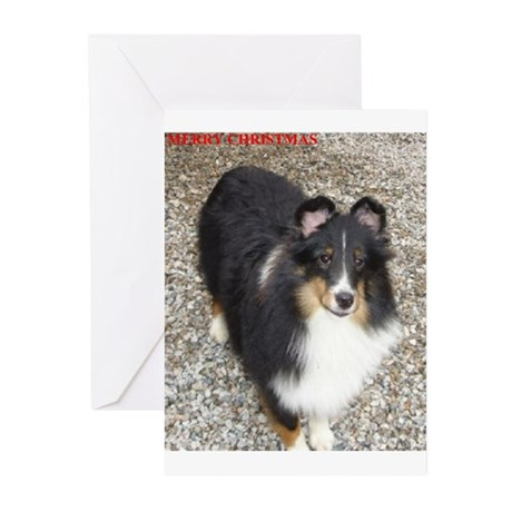 Dooley's Christmas Greeting Cards (Pk of 10)