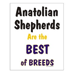 Anatolian Shepherd Best of Breeds Posters