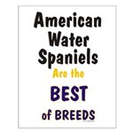 American Water Spaniel Best Breed Small Poster