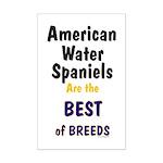 American Water Spaniel Best Breed Mini Poster Prin