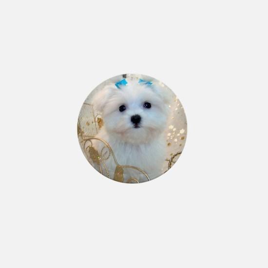 Maltese Blue Bows Mini Button