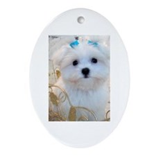 Maltese Blue Bows Oval Ornament
