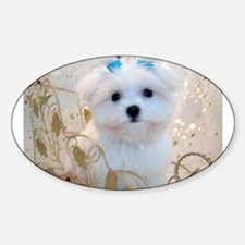 Maltese Blue Bows Oval Decal
