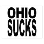 Ohio Sucks Small Poster