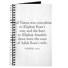 GENESIS 36:11 Journal