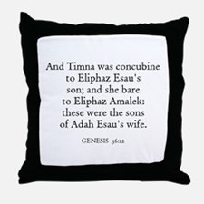 GENESIS  36:11 Throw Pillow