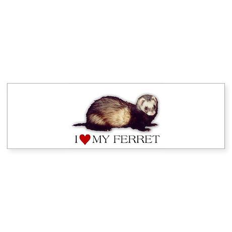 I love my ferret Bumper Sticker