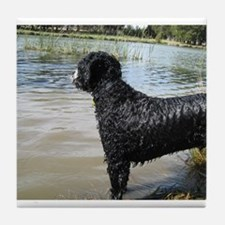 Portuguese Water Dog Tile Coaster