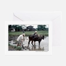 Japanese farmers with water buffalo Greeting Cards