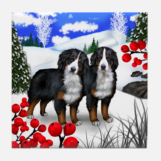 BERNESE MOUNTAIN DOGS WINTER BERRIES Tile Coaster
