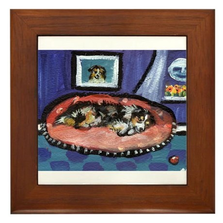 Australian shepherd blue bed Framed Tile