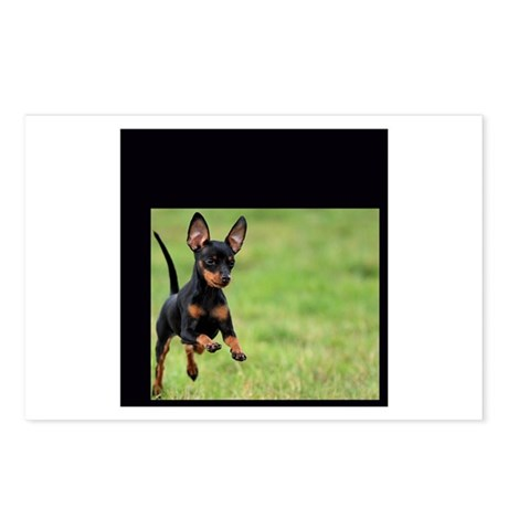 CUTE PUPPY Postcards (Package of 8)