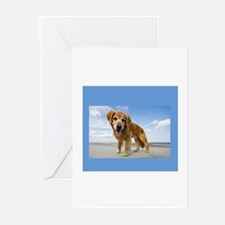 BEACH DOG Greeting Cards (Pk of 20)