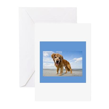 BEACH DOG Greeting Cards (Pk of 10)