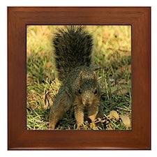 Squirrel tote Framed Tile