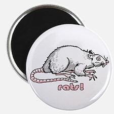 I like rats Magnet