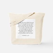 GENESIS  43:18 Tote Bag