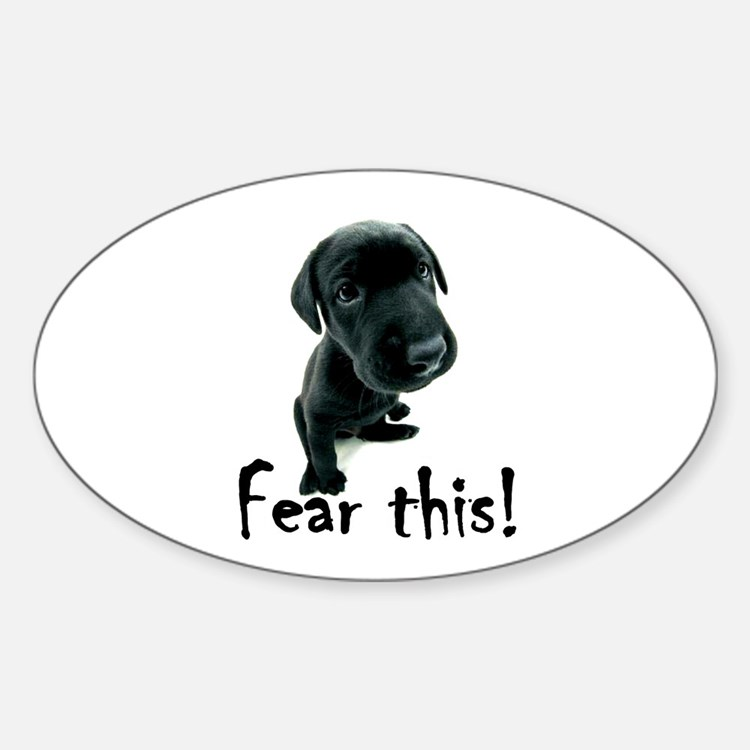 ~Fear This~ Oval Decal